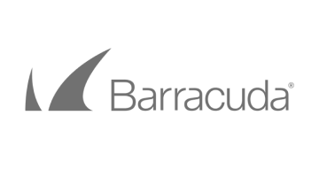 Barracuda Logo in Grey