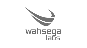Wahsega Logo in Grey